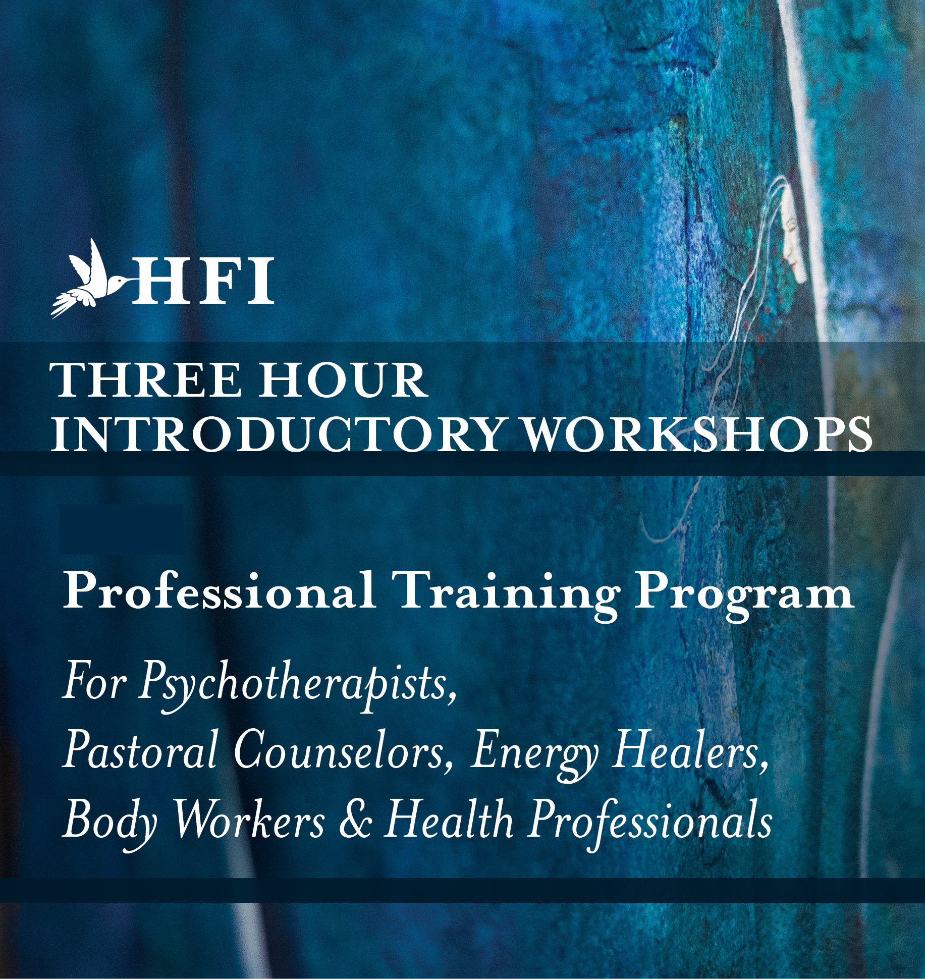 hfi-3-hr-workshop-2014